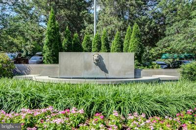 4000 CATHEDRAL AVE NW # 343, WASHINGTON, DC 20016 - Photo 2