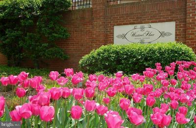 4286 MASSACHUSETTS AVE NW, WASHINGTON, DC 20016 - Photo 2
