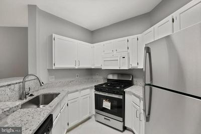 4405 FAIR STONE DR APT 302, FAIRFAX, VA 22033 - Photo 2