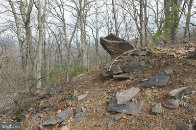 LOT 337 NATHANIEL MT RD, Moorefield, WV 26836 - Photo 1