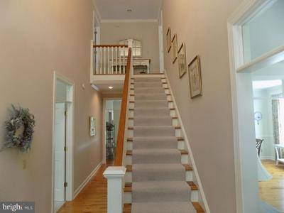 28798 OUTRAM ST, EASTON, MD 21601 - Photo 2