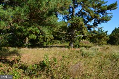14094 DOWELL RD, Dowell, MD 20688 - Photo 1