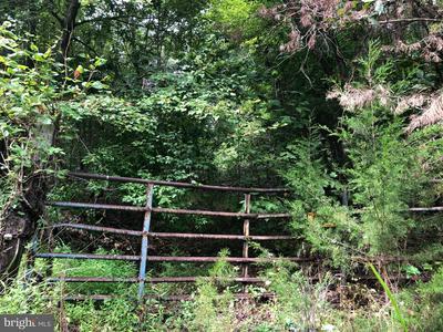 LOT 2 SETTLE SCHOOL ROAD, RIXEYVILLE, VA 22737 - Photo 1