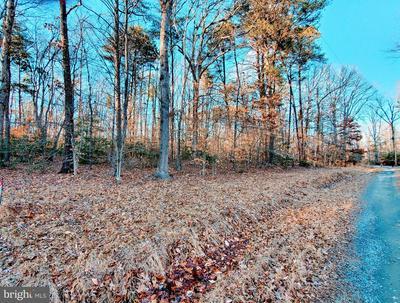 CRAWLEYS DAM RD, Goldvein, VA 22720 - Photo 2