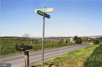 MOUNTIAN VALLEY AND RASPBERRY LN INTERSECTION, BROADWAY, VA 22815 - Photo 1