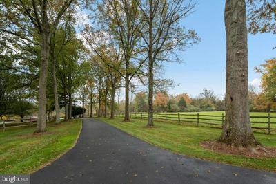 386 BYRAM KINGWOOD RD, FRENCHTOWN, NJ 08825 - Photo 1