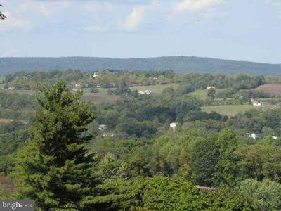 LOT ROUTE 225 PETERS MOUNTAIN ROAD, HALIFAX, PA 17032 - Photo 1