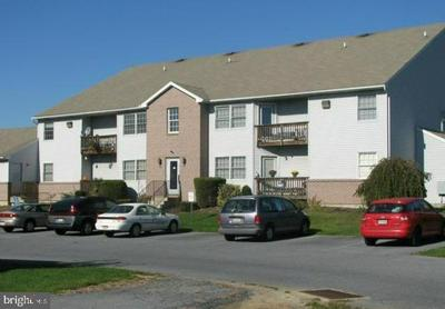 5300 RUSSELL CT APT 3, WHITEHALL, PA 18052 - Photo 1