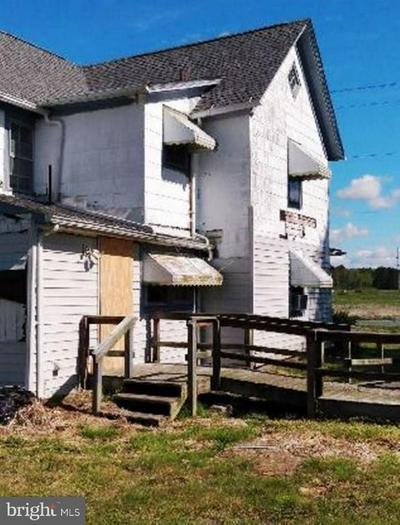 29673 KINGSTON LN, Westover, MD 21871 - Photo 2