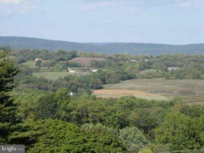 LOT ROUTE 225 PETERS MOUNTAIN ROAD, HALIFAX, PA 17032 - Photo 2