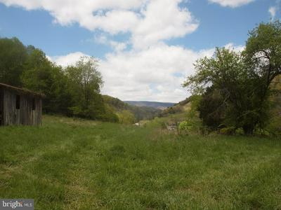 RT #220N- WILSON RIDGE, FRANKLIN, WV 26807 - Photo 2