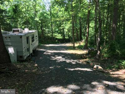 DODSON ROAD, AMISSVILLE, VA 20106 - Photo 2