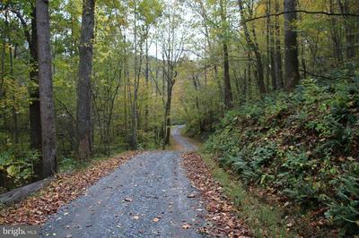 MATTIES RUN ROAD, STANARDSVILLE, VA 22973 - Photo 1