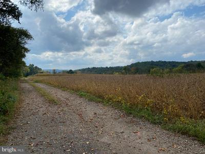 COUNTY LINE RD, BECHTELSVILLE, PA 19505 - Photo 2