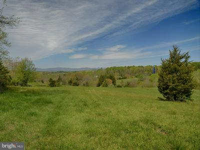 TBD-2 REPTON MILL ROAD, MADISON, VA 22727 - Photo 2