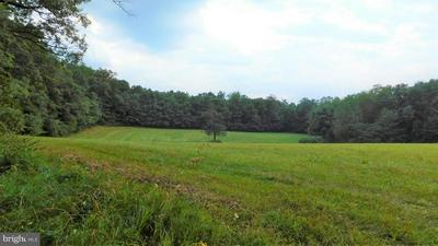 BUCK VALLEY RD, Warfordsburg, PA 17267 - Photo 2
