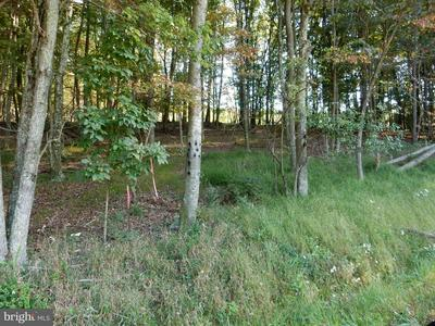 LOT 3 MEADOW HILLS SUBDIVISION, Baker, WV 26801 - Photo 1