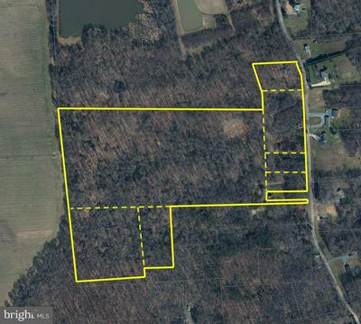 10698 CHESTERVILLE FOREST RD, MILLINGTON, MD 21651 - Photo 1