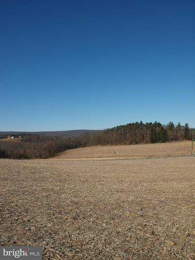 0 FARMERS ROAD, RINGTOWN, PA 17967 - Photo 1