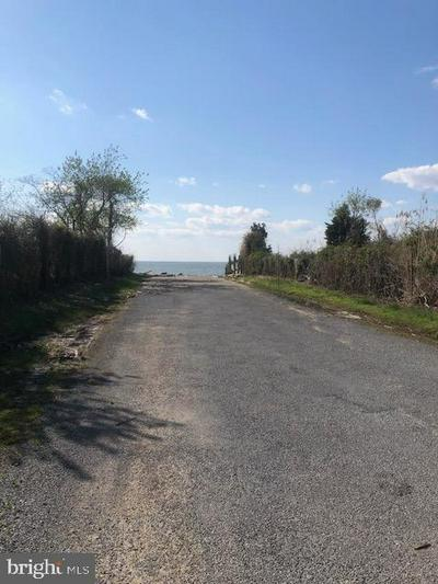 PARK DR #18, Chestertown, MD 21620 - Photo 2