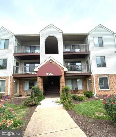 9567 COGGS BILL DR APT 203, MANASSAS, VA 20110 - Photo 2