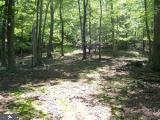 LOOP ROAD, FRANKLIN, WV 26807 - Photo 2