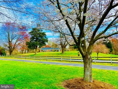 13 BETHEL LN, Harwood, MD 20776 - Photo 2