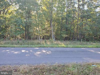 0 BLACK WALNUT RUN ROAD, RHOADESVILLE, VA 22542 - Photo 2