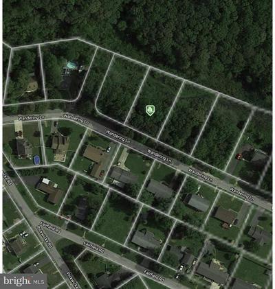 LOT 30 WANDERING LANE, LEWES, DE 19958 - Photo 2