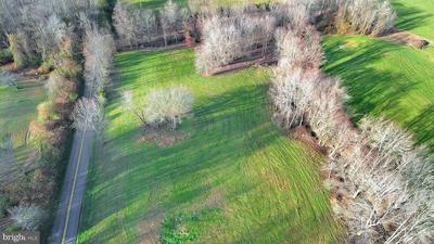 16439 HOLLY HILL FARM LANE, REVA, VA 22735 - Photo 1
