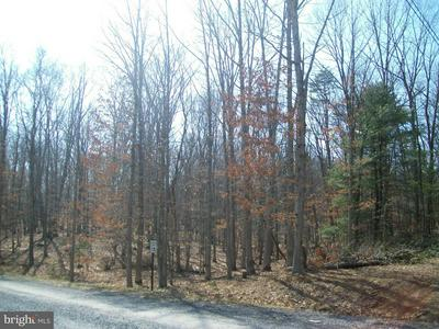 COOPER RUN RD, CAPON BRIDGE, WV 26711 - Photo 2