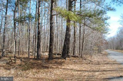11105 PINEY FOREST RD, BUMPASS, VA 23024 - Photo 2