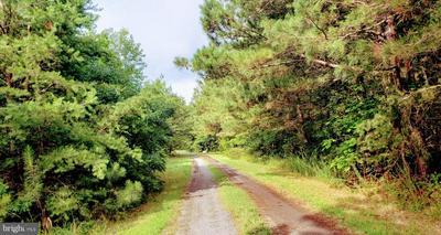 26705 ADAMS RD, Seaford, DE 19973 - Photo 2