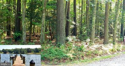 6 LOTS PLEASANT VIEW DR & HESTON WAY, KINSALE, VA 22488 - Photo 1