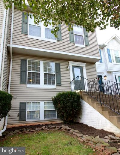 21009 LEMON SPRINGS TER, ASHBURN, VA 20147 - Photo 1