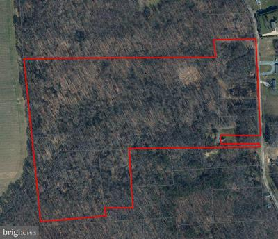 CHESTERVILLE FOREST RD, MILLINGTON, MD 21651 - Photo 1