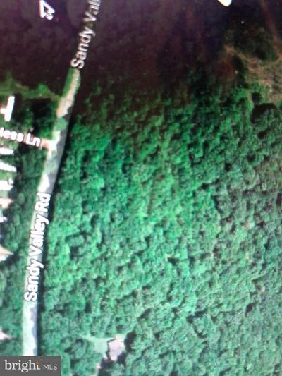 LOT 21 SANDY VALLEY RD, WHITE HAVEN, PA 18661 - Photo 1
