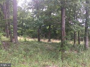 PERRY RD #LOT 4, WINCHESTER, VA 22602 - Photo 2