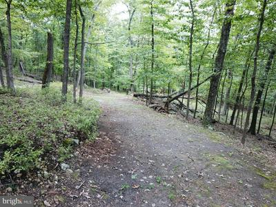 LOT #4 SYCAMORE DRIVE, CAPON BRIDGE, WV 26711 - Photo 1
