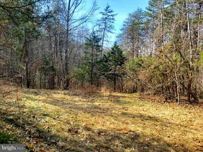 HARVEY RD, BARBOURSVILLE, VA 22923 - Photo 2