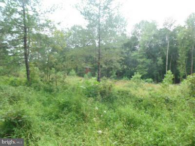 LOT 13 BELLEWOOD ACRES LN, Rhoadesville, VA 22542 - Photo 1