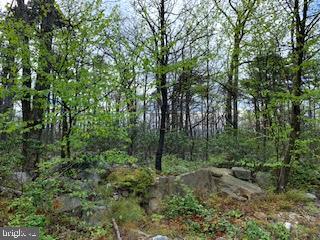 0 MOUNTAIN FALLS TRAIL, WINCHESTER, VA 22602 - Photo 1