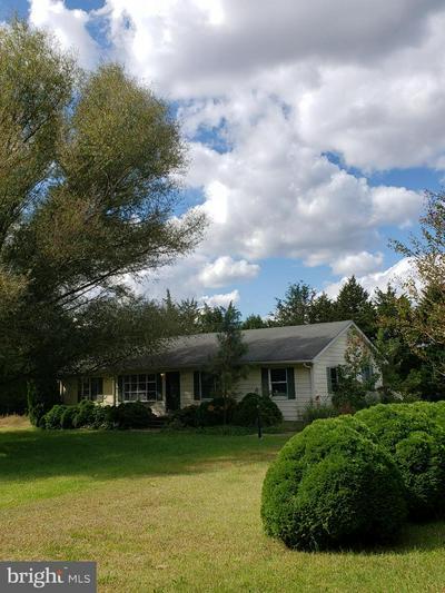 18916 SHINGLE POINT RD, GEORGETOWN, DE 19947 - Photo 2