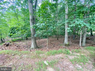 106 GREEN LEAF DR, CROSS JUNCTION, VA 22625 - Photo 1