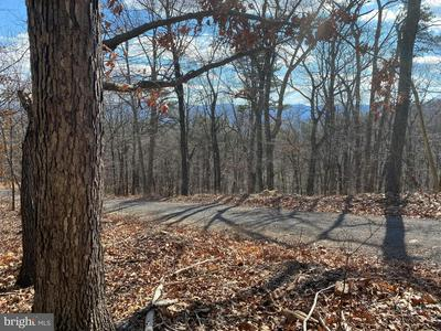 ACREAGE PANORAMA VIEW DR, STANLEY, VA 22851 - Photo 1