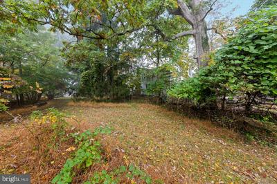 FOREST AVE, ROCKVILLE, MD 20850 - Photo 2