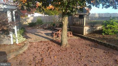 280 DAUB RD, MYERSTOWN, PA 17067 - Photo 2