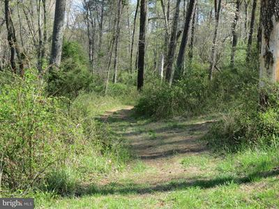 SOUTH POES, AMISSVILLE, VA 20106 - Photo 2