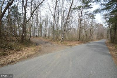 TWYMANS MILL RD, MADISON, VA 22727 - Photo 2