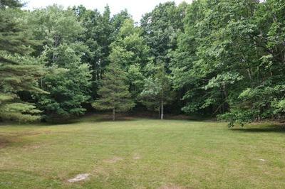 476 RHOADES TO BAILEY RD, New Marlborough, MA 01259 - Photo 2